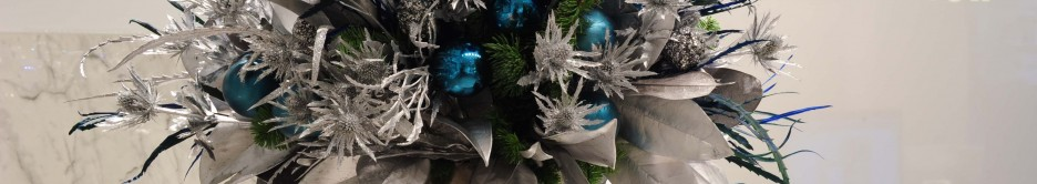 Christmas Comes 2 George Street