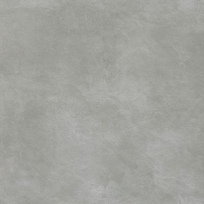 Minoli Evolve Silver Feature